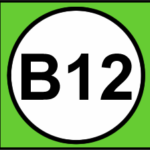 B12 TransMilenio