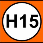 H15 TransMilenio