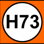 H73 TransMilenio